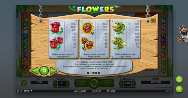 Flowers slot double symbols