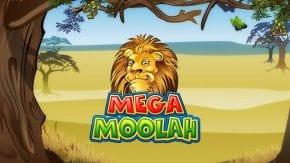 Mega Moolah (メガ・ムーラ)