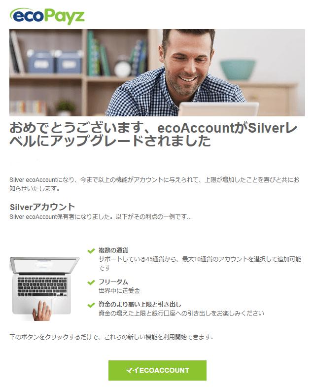 ecoPayz 承認メール