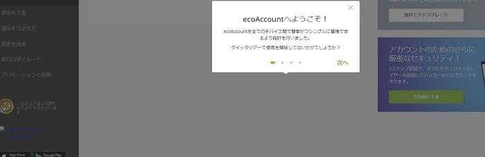 ecoPayz 登録完了