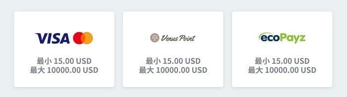 Simple Casino 入金オプション