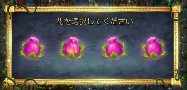 レインフォレスト花